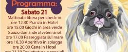 2° Raduno Italiano Pechinesi 21/22 Marzo 2020